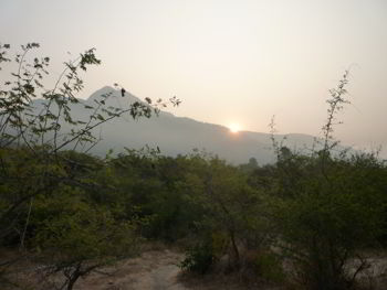 Dawn circumambulation around Arunachala Hill